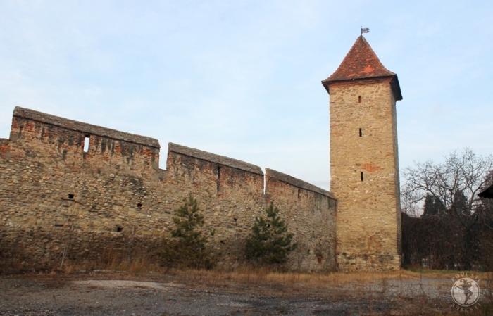 Turnul studentului, ianuarie 2014
