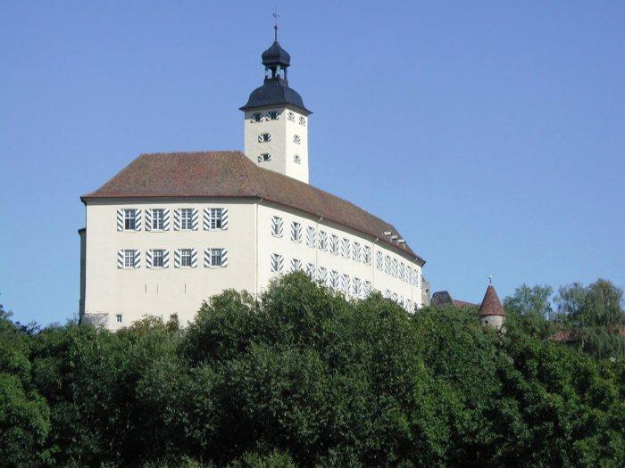 Castelul Horneck din Gundelsheim, sediul Muzeului Transilvănean. Foto: © Siebenbürgisches Museum Gundelsheim