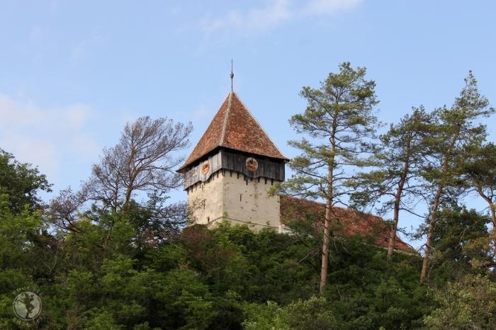 Biserica fortificată din Rodbav/Rohrbach/Nadpatak, jud. Brașov. Foto: Mihaela Kloos-Ilea
