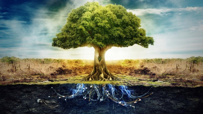 24091-tree-of-life-1366x768-digital-art-wallpaper